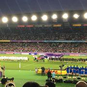 ラグビーワールドカップ観戦