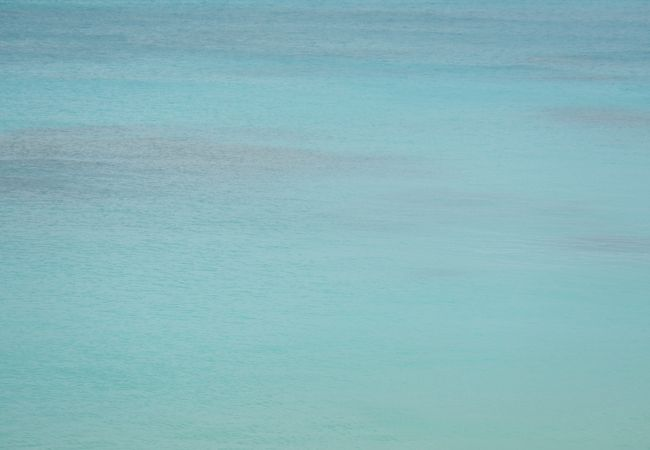 真っ白な砂浜が800m続く、渡嘉敷島を代表する白い砂浜とケラマブルーの海が広がる阿波連ビーチ