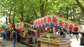 正の木祭り