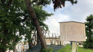 桜塚古墳群