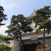 徳川家康ゆかりの城