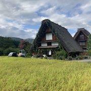 圧巻!一度は行くべき日本の絶景です♡