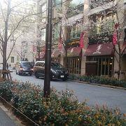 江戸桜通り 散る桜