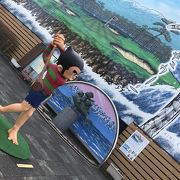 氷見:プロゴルファー猿ポケットパーク
