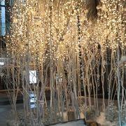 12月は白く輝くツリーを昼間から見れました