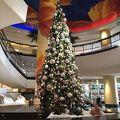 素晴らしいクリスマスツリーが飾られていて、さらに美味しい朝食のブッフェをいただきました。茶碗蒸しが柔らかくでお勧めです。