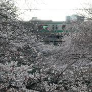 川の両側に延々と。埼京線の鉄橋が撮影名所のようです。