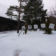 冬の動物園も乙なものです。