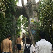 吊り橋を渡り小さな島へ