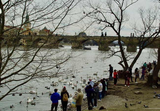 ボルガ川の中洲が市民公園になっています。