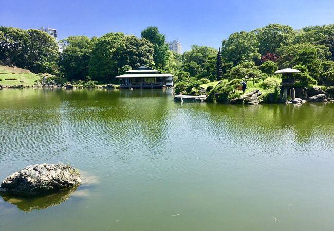 清澄庭園 大泉水