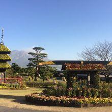 仙巌園(磯庭園) 桜島ビューポイント