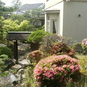 小規模ながら見事な池泉回遊式の庭園がある