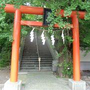 朱色の鳥居の先の急階段の参道と大銀杏が特徴的