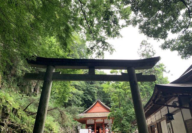 金刀比羅宮 厳魂神社 (奥社)