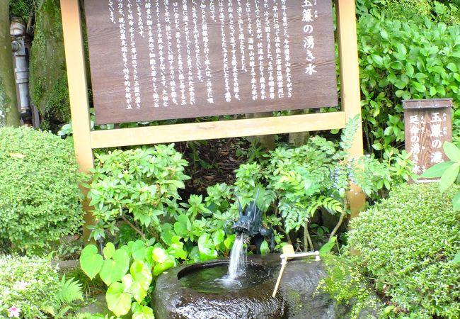 天成園の庭に沸いているわき水。