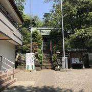 夢見ヶ崎動物公園とセットで