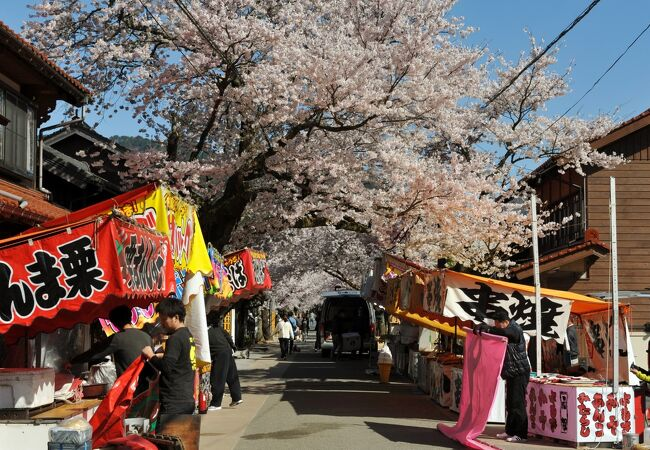 がいせん桜祭り