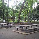 都立林試の森公園