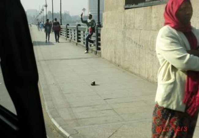 タハリール広場から中洲のゲズィーラ島へナイル川にかかる橋
