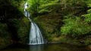 落ち葉のグルグルの撮影ができる滝