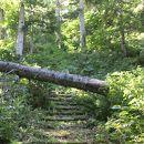 羊蹄山自然公園