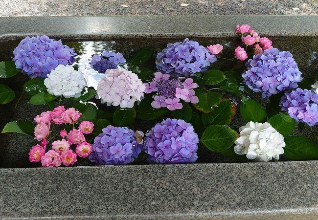 月岡神社に参拝しました