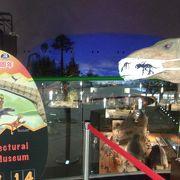 辺鄙な立地なのに、年間100万人近くを集める県立博物館には驚く