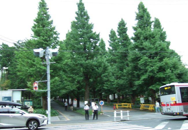 日吉駅東口の目の前