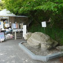 亀老山売店