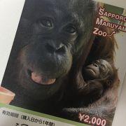 年間パスは2000円に値上がり!