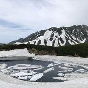 6月行きまして、みくりが池がまた氷に覆われていました。とても素敵でしたのでオススメです