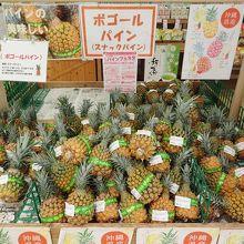 ファーマーズマーケットやんばる (はい菜!やんばる市場)