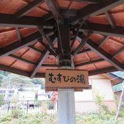川治ふれあい公園付近に行ってみました。