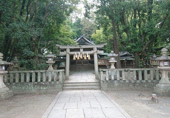 小竹八幡神社