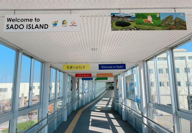 佐渡島への移動はこちらのターミナルから♪ カーフェリーとジェットフォイルがあります。