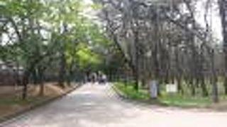 大陵苑 (天馬塚)
