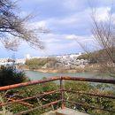 石山寺と瀬田川流域