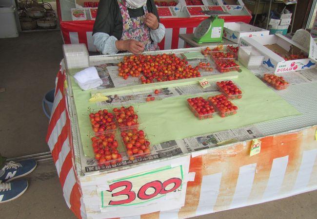 7月のさくらんぼは、仁木郵便局隣で高速バス利用者にも店頭販売を手軽に買える