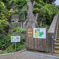 亀塚がある公園