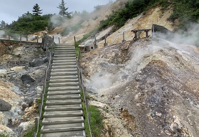 火山温泉活動をみることが出来る!