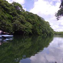 流れがほとんど無い川には空が映ります。
