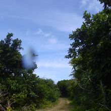 島の周遊道路は当然未舗装です。