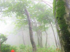 八峰・藤里のツアー