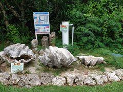 宮古島のツアー