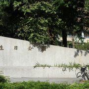 マンションが並ぶ住宅街の公園