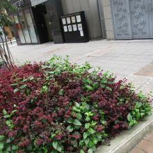 鶴の茶屋跡碑