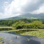 妙高山を望める池ですが、それ以外に特徴はあまりない。