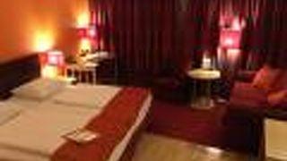 アパートメント ホテル アン デル リーマーガッセ