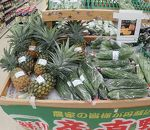 Aコープ (久米島店)